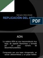 Replicacion Del And