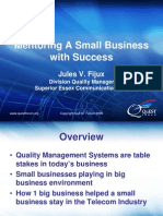 Mentoring a Small Business With Success