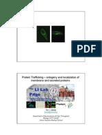 Protein Trafficking 041206