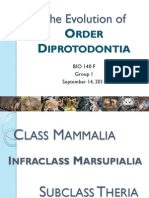 PPT - The Evolution of Order Diprotodontia