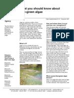 Algae in Water - Copy