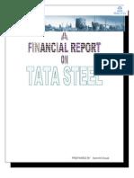 60757942 Financial Analysis of TATA STEEL