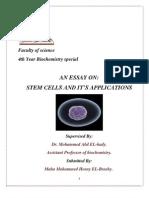 Stem Cell History Draft (1)