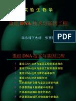 重组DNA技术与基因工程(1-3)