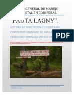 Plan Pino Pauta Lakgny Mejorado