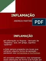 INFLAMAÇÃO2 (2)