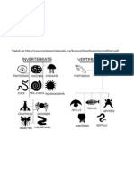 Classificació_esquema animals