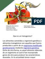 alimentos transgenicos 2