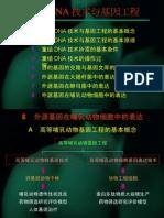 重组DNA技术与基因工程(8)