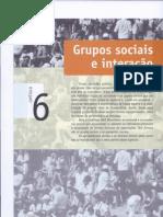 Grupos sociais e interação
