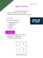 Pigmentos_VM