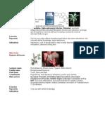 Botmet Male and Endocrine