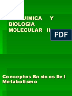 1eraclaseConceptos Basicos Del Metabolismo