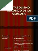 Metabolismo Aerobico de La Glucosa