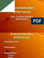 ExtremidadesInferioresAnatomia1