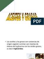 grasasyaceites-1211864936686248-9