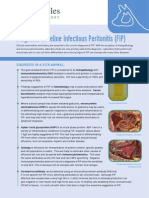 Diagnosis of Feline Infectious Peritonitis (FIP)