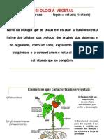 Fisiologia Veg 1 aula Célula Veg
