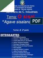 Sisal (2)