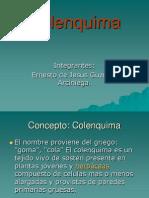 Colenquima