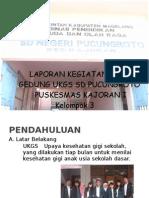 Laporan Kegiatan Luar Gedung Puskesmas Kajoran Tomy