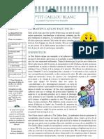 Ptit Bulletin n° 6 La Relation de Manipulation