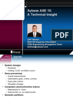ISUG ASE15 Tech Insight May