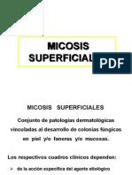 Seminario 2 - Micosis SUPERFICIALES 2006