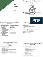 Teorico 2 - Patogenia de Las Infecciones Fúngicas 2006