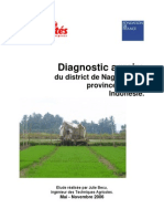 Rapport Diagnostic Agraire Final