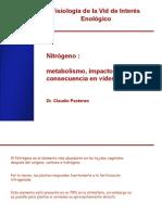 Nitrogeno en Vides- Metabolismo e Impacto