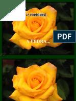 APEDRA