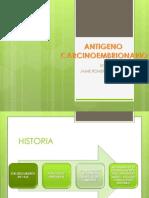 ANTIGENO CARCINOEMBRIONARIO2
