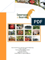 Curriculum Conservacion y Desarrollo 2011