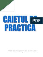 Filehost_Contabilitatea Unei Societati - Practica de Special It Ate