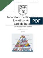 Pract. Identificación de Carbohidratos