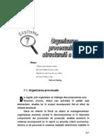 Organizarea Structural A Si Procesuala a Firmei
