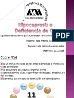 seminario de hipocuprosis