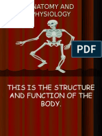Anatomy and Physiology-Bones and Joints[1]
