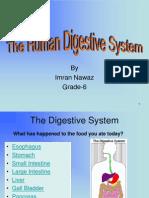 Digestive Syestem Ppt by Imran