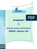 Marketing Strategy and Marketing Mix of Berger