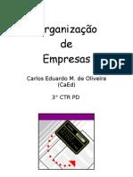 Organizacao de Empresas