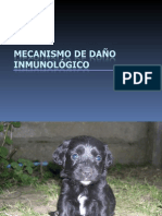 MecanismosDanoInmunologico