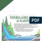 afis_padure[1]