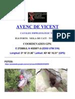 AVENC DE VICENT
