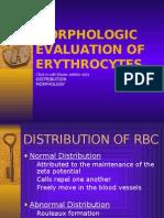48271934 7 Morphologic Evaluation of Erythrocytes