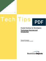 Crystal Xcelsius Developer White Paper