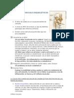 PROBLEMAS Cadera Rodilla Pie01