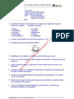 Biologia Selectividad Examen 5 Resuelto Castilla La Mancha Www.siglo21x.blogspot
