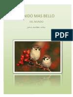 El Nido Mas Bello